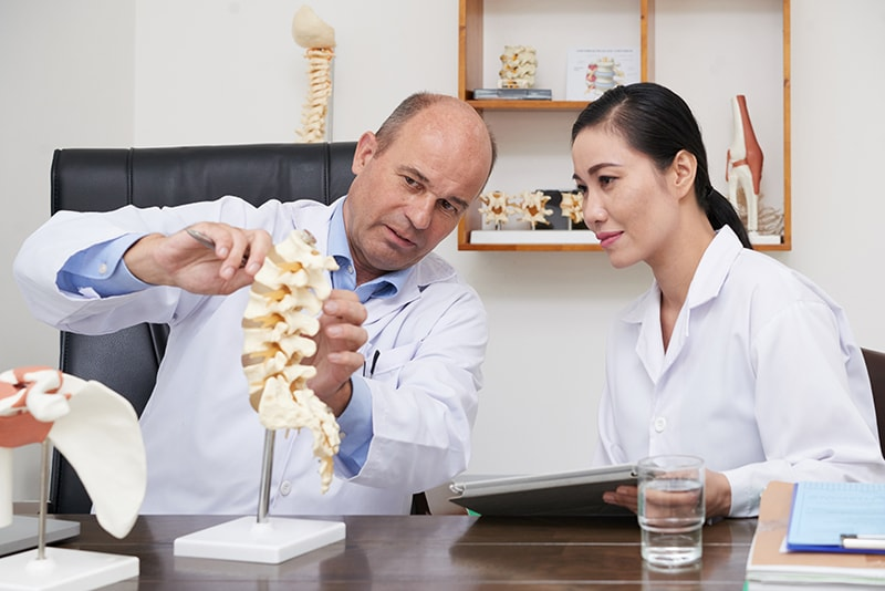 Four subjects an osteopath studies